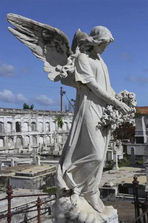 The origin of the stone angel