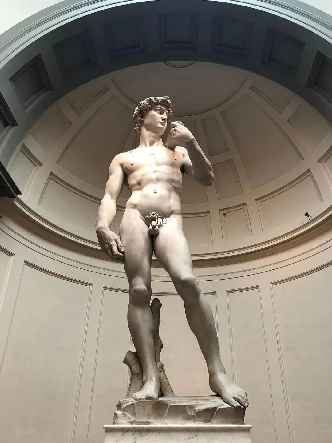 What is the statue of David meaning