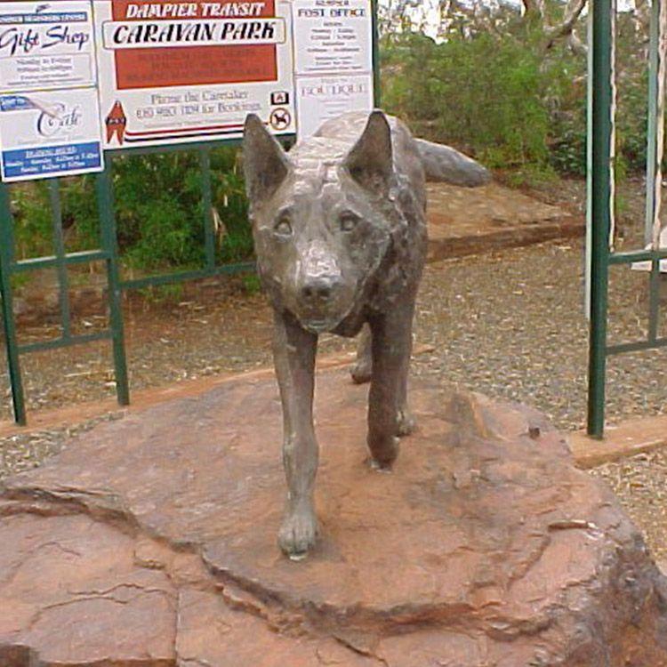 red dog pilbara statue.jpg